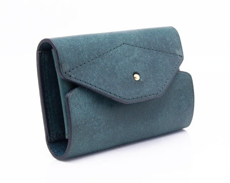 Land Card Case