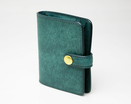 Land Mini cardcase(belt)